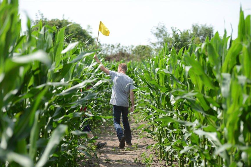 Activiteiten vriendengroep maisdoolhof Polderevents